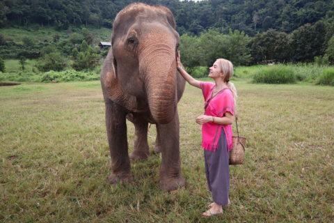 Ralu Calatoreste Happy Elephant Home